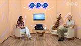 BSTV adás 2018. október 11.