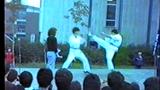 Schönherz Qpa 1985
